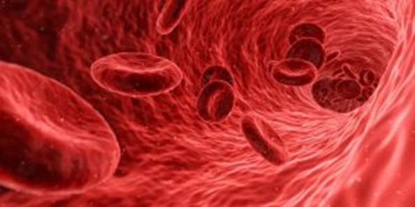 platelet rich plasma therapy and injections